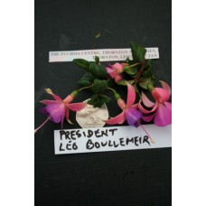 PRESIDENT LEO BOULLEMIER