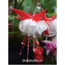 Snowburner